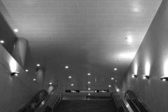 Tile Ceiling 1